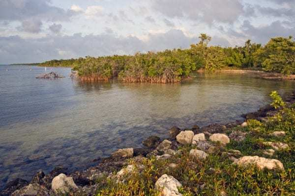 Visiting Biscayne National Park